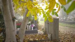 Tombstones between trees 4K Stock Footage