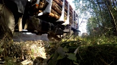 Gathering loading timber on logging truck. The harvester working in a forest. Tr Stock Footage
