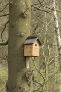 Nesting box in woodland Stock Photos