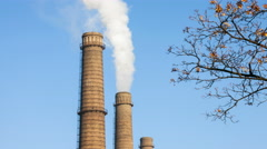 Smoke from factory over blue sky and tree Stock Footage