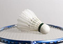 Shuttlecock on Badminton Racket Stock Photos