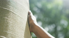 4K Close up on hand of a woman touching a tree trunk in the woods - stock footage