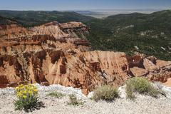 Stock Photo of Views of bizarre sandstone erosions in Amphitheater Cedar Breaks National