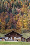 Mountain hut in front of autumnal forest EngAlm Hinterriss Karwendel Tyrol - stock photo