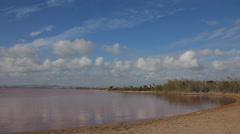 Natural pink salt lake. Saline Stock Footage