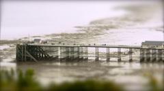 Pier at Low Tide. Tilt Shift Timelapse - stock footage