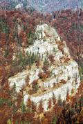 Big rock in the autumn forest, seasonal natural scene Stock Photos