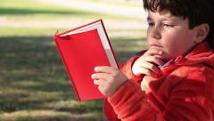 Happy young boy reading a book Stock Footage
