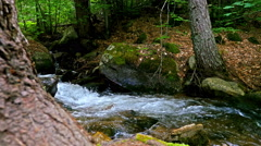Fast flowing water of a mountain river, dolly Stock Footage