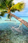Old hammock, attached to a palm tree on a  beach in The Indian Ocean, Maldive Stock Photos