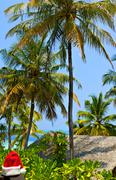Tropical seascape on the island Ranveli with Santa hat (The Indian Ocean, Mal - stock photo