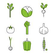 Healthy food card vegetables vegetarians eco-friendly - stock illustration