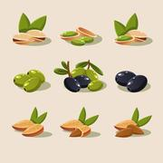 Olives and Nuts Vector Illustration Modern Design - stock illustration
