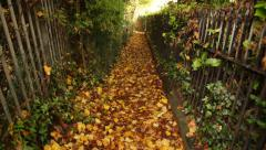 Lovers Walk: longest autumn alley, Kegworth, England, Europe, tilt - stock footage