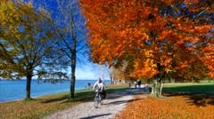 Autumn at Lake Starnberg, Bavaria, Germany Stock Footage