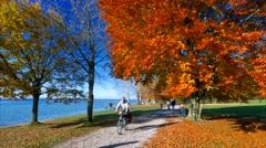 Autumn at Lake Starnberg, Bavaria, Germany Stock Footage