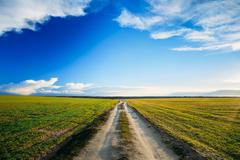 Stock Photo of Dirty countryside sandy road in green wheat field. Spring season