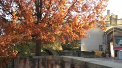 Nottingham Castle, Golden autumn Stock Footage