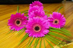 Bouquet of purple gerber on a wooden table, still life, flowers - stock photo