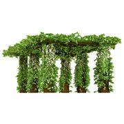 Outdoor arbor with ivy pergola - stock illustration