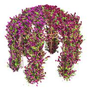 Flowers curl on a metal gazebo pergola - stock illustration