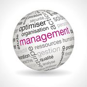 Stock Illustration of French management sphere with keywords