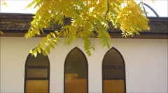Yellow leaves swaying with backgrond of a church house Stock Footage
