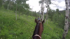 4k Riding on horses through aspens in colorado riders perspective Stock Footage