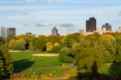 Great lawn during the fall season - stock photo