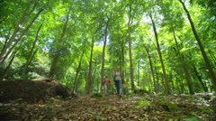 4K Cheerful group of hipster friends hiking in the woods together Stock Footage