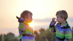 Two cute little boys smile play wave nature countryside grass meadow slow motion Stock Footage