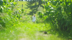 4K Happy little girl running in the countryside on a summer day.  Stock Footage