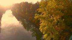 4K Aerial: Reveal Golden Tree on River Bank Autumn Stock Footage