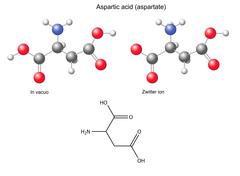 Aspartic acid (Asp) - chemical structural formula and models Stock Illustration