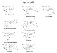 Structural chemical formulas of B-type mycotoxins Stock Illustration