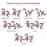 Chemical formulas of main sugars: mono- and disaccharides - stock illustration