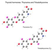 Structural chemical model of  thyroid hormones Stock Illustration
