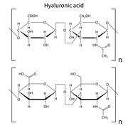 Structure of hyaluronic acid Stock Illustration