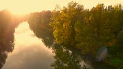 4K Aerial: Passing Golden Tree on River in Fall Stock Footage