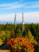 Two transmission towers in autumn forest - stock photo