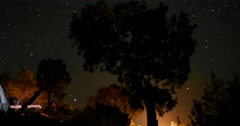 4K Star Timelapse of Juniper Tree with Campfire Burning Stock Footage