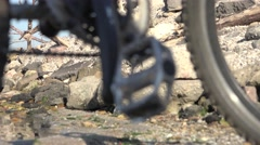 Bicycle wheel with protectors against the backdrop of the river and stones Stock Footage