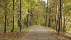 Walkway in the park. Autumn daytime. Smooth dolly shot. Stock Footage