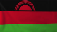 Flag of Malawi waving in the wind, seemless loop animation Stock Footage