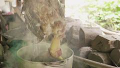 Removing feathers of dead chicken Stock Footage