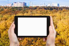 Tablet pc with cut out screen and yellow forest Stock Photos