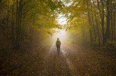 Mystical path - stock photo