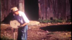 2696 - shoveling cow pies, bull shit, from the barnyard -vintage film home movie - stock footage
