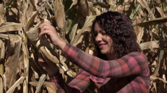 Stock Video Footage of Young woman inspecting corn in the field