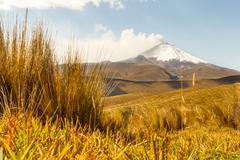 Cotopaxi Volcano In Ecuador - stock photo